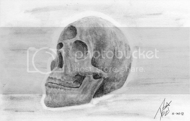 http://i1163.photobucket.com/albums/q550/kegaumongo/Calavera2reduit_zpsadb4fdb6.jpg